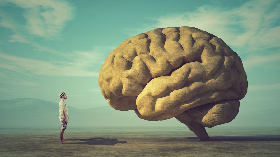 My Brain Made Me Do It: Psychological Drivers of Employee Behavior