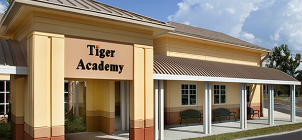 Main banner image for Tiger Academy
